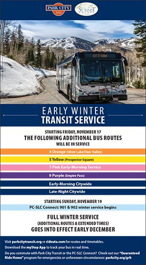 wintertransit Opens in new window
