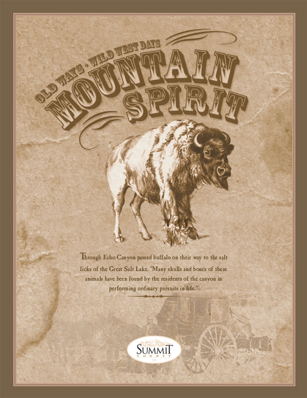 Mountain Spirit Cover
